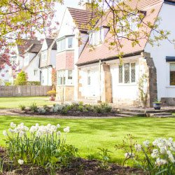 How to Spruce Up Your Garden – Part 3