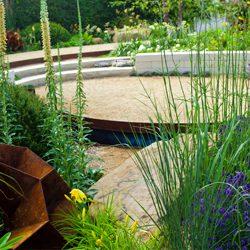 Reflecting Peace in a Garden