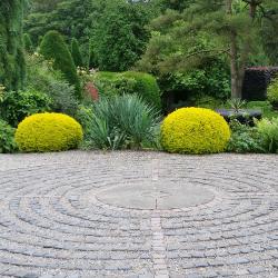 A visit to York Gate Garden