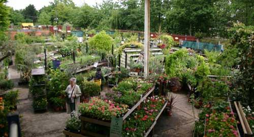 garden_centre