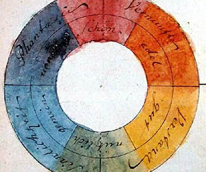 The colour wheel and garden design