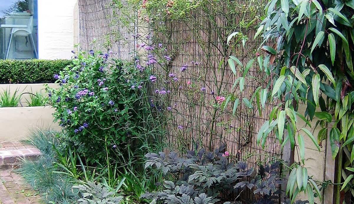 Chic_courtyard_garden_Oakwood_climbers_brick_path_6