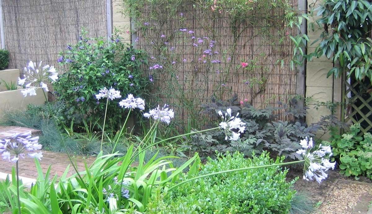 Chic_courtyard_garden_Oakwood_grasses_perennial_2