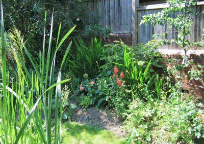 4.-Green_Woodland_Oasis_shady-planting