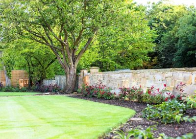 4.--Large_open_front_garden_Adel_photinia
