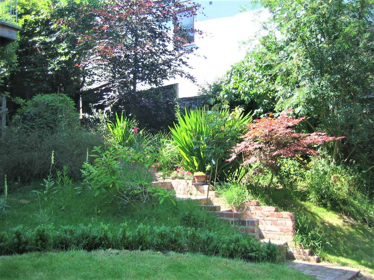 Green woodland oasis - Chapel Allerton - North Leeds ...