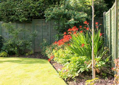 7.--Garden_of_Abundance_Adel_rear_garden_-montbretia