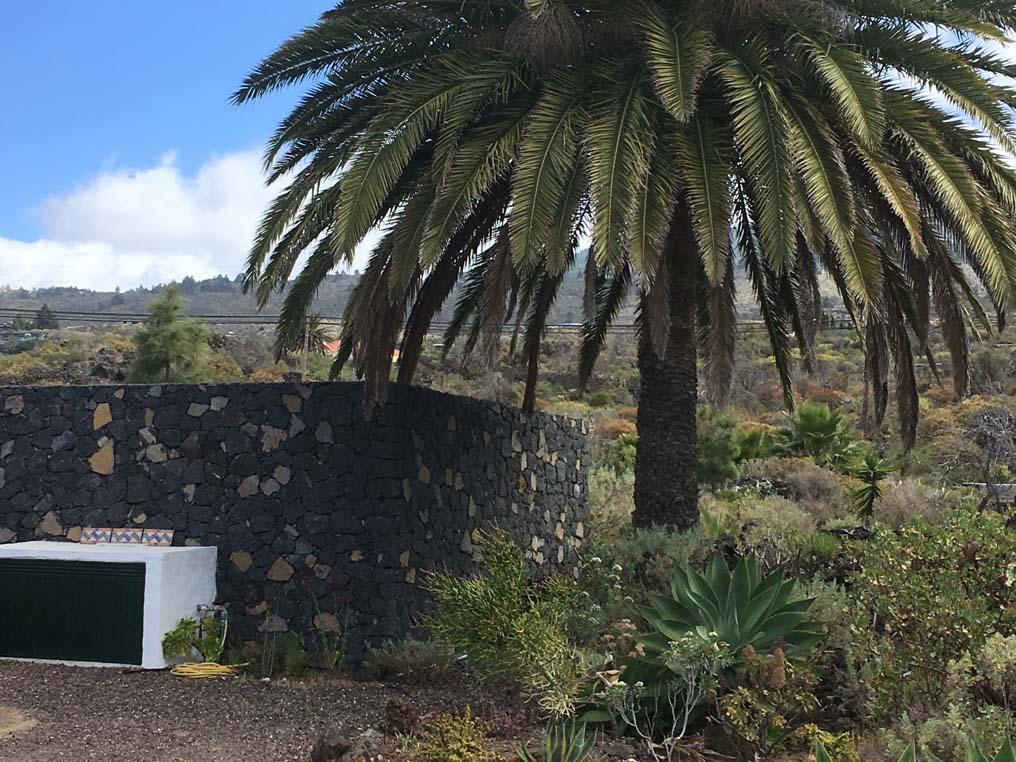 La Casa Lagarto, Toque, La Palma_6