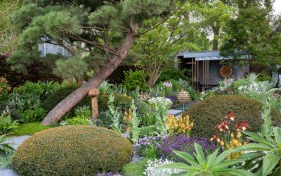The 2019 Show Garden Trends