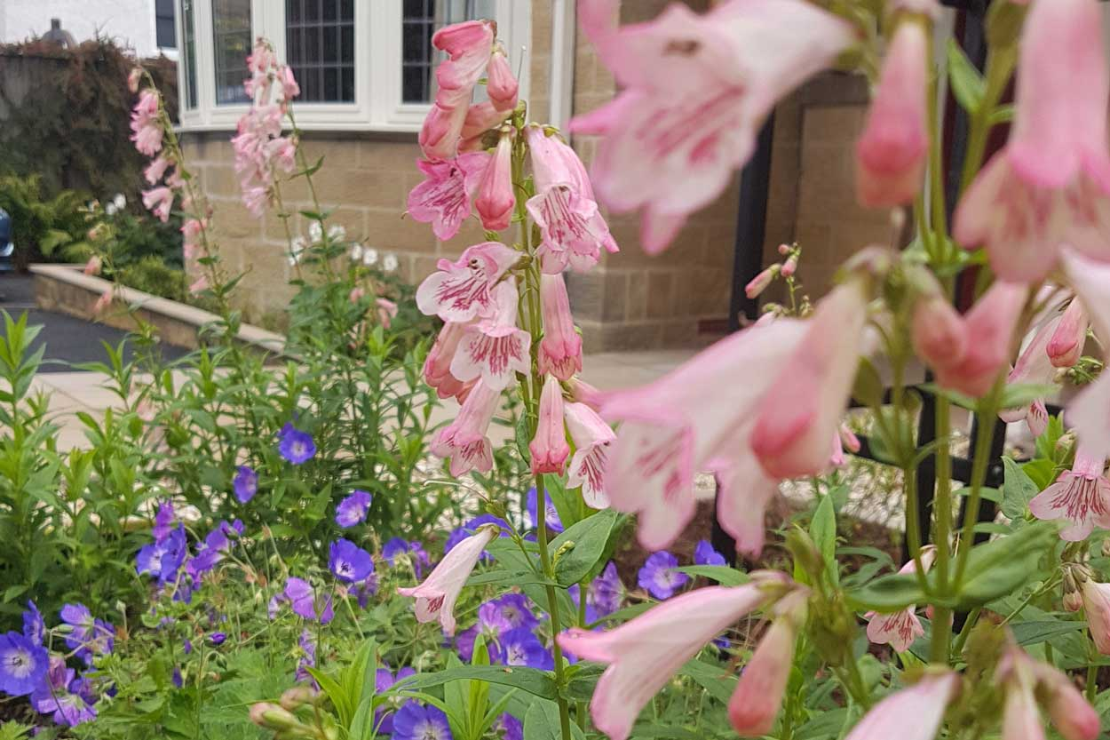 North-Leeds-Garden-Design-Arts-and-Craft-Garden-1
