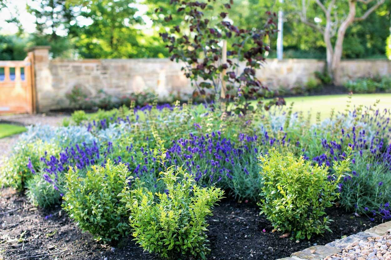 Low-maintenance-large-garden-2