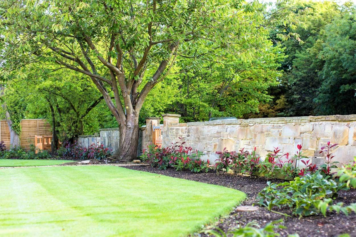 Low-maintenance-large-garden-4