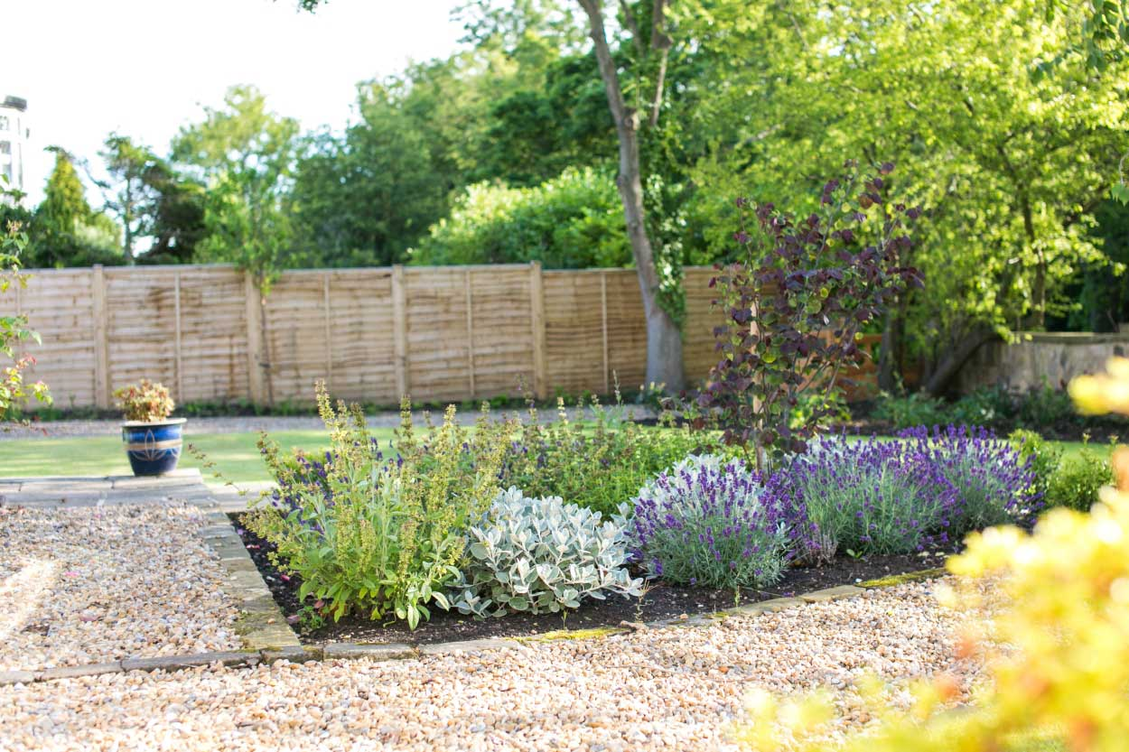 Low-maintenance-large-garden