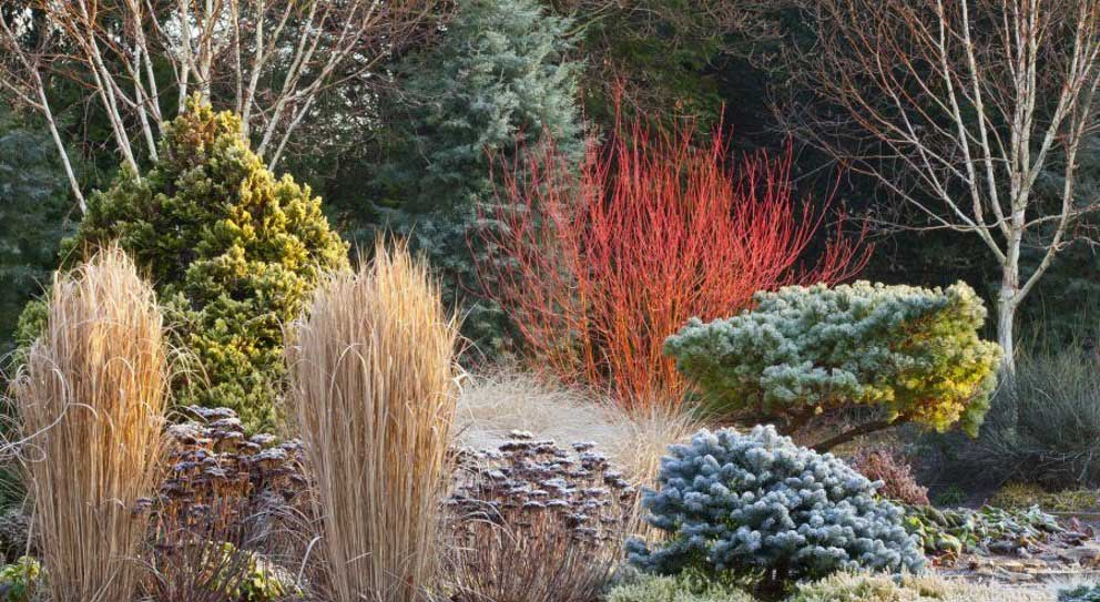 Garden-Structure-is-Frozen-Time-3