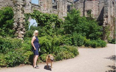 Historic garden with a modern twist